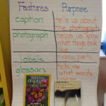 You Can't Ignore…Nonfiction Text Features! & Freebie Chart