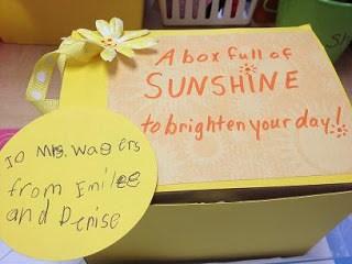 A Little Bit Of Sunshine & Rose-Bush-Food-Stuff