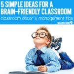 5 Simple Ideas for a Brain-Friendly Classroom