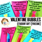 Valentine Bubbles Student Gift