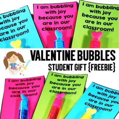 Valentine Bubbles Student Gift