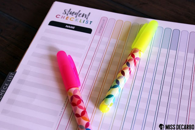 Beautiful Back to School Tools for Teachers: An Erin Condren Review by Miss DeCarbo