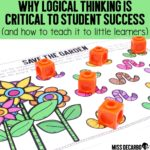 Why Logical Thinking Is Critical to Student Success