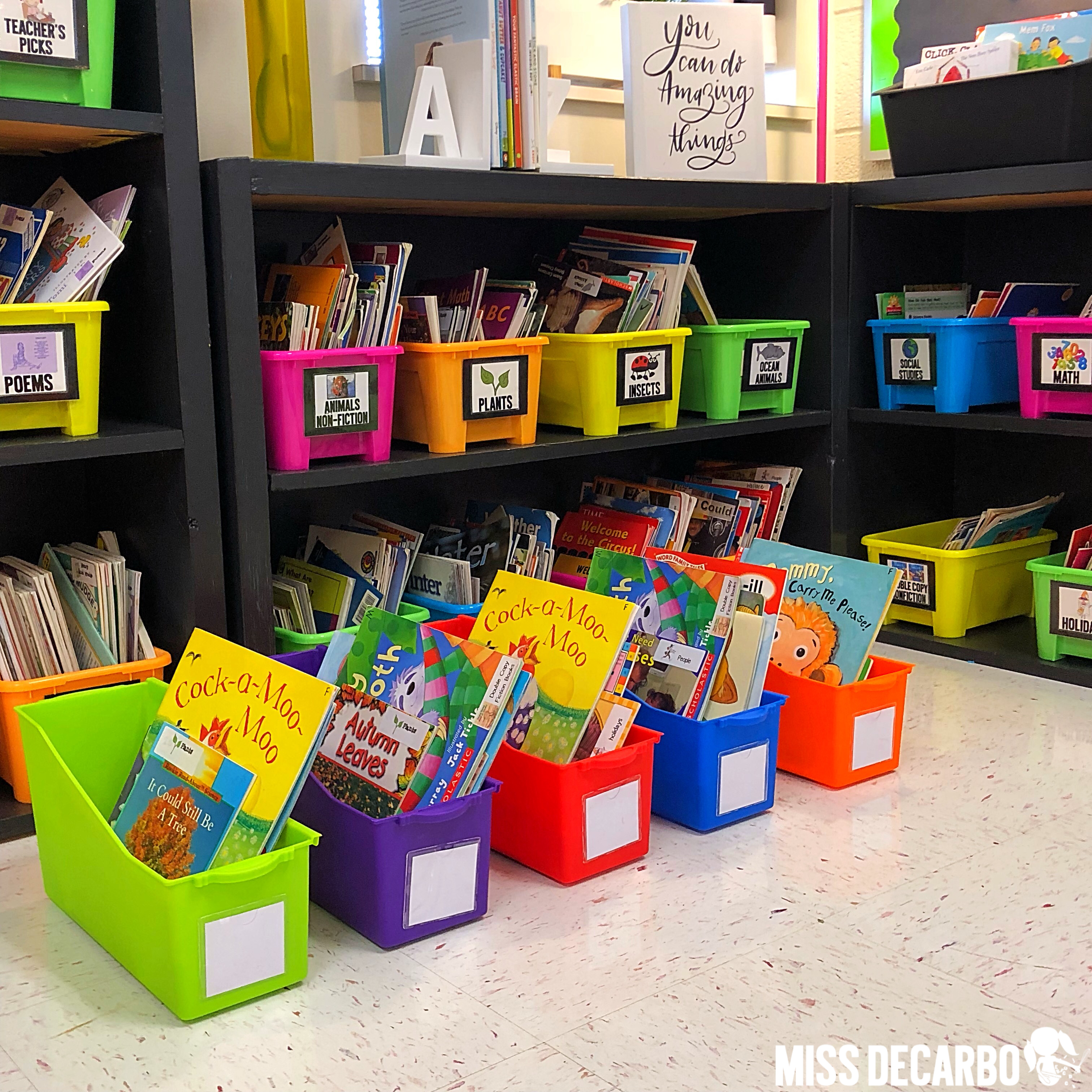 Use your classroom library to explore and teach fiction and nonfiction text to your students! Place fiction and nonfiction books into book bins and have the students explore the books' features and characteristics in groups!
